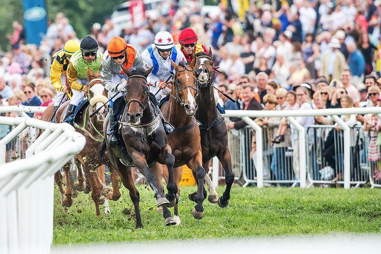 crowds-watching-horse-racing