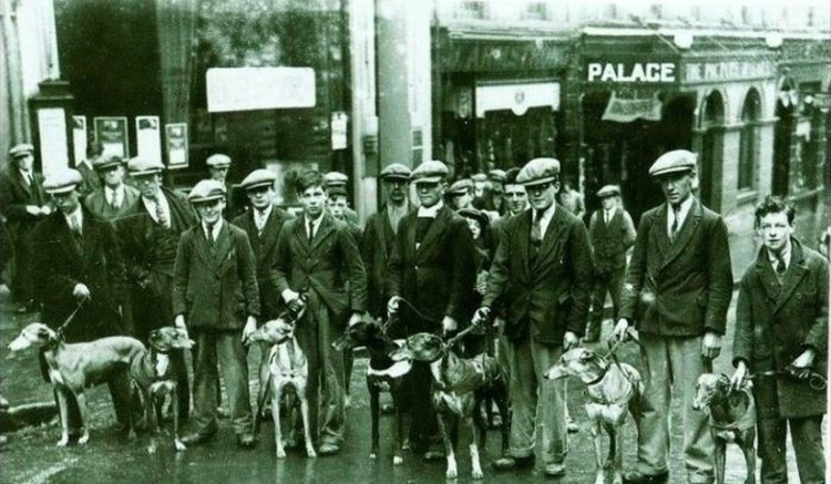 Sejarah Balap Greyhound