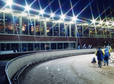 Anjing Greyhound Stadion Oxford
